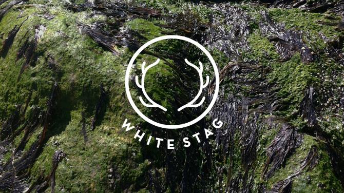 White Stag Min
